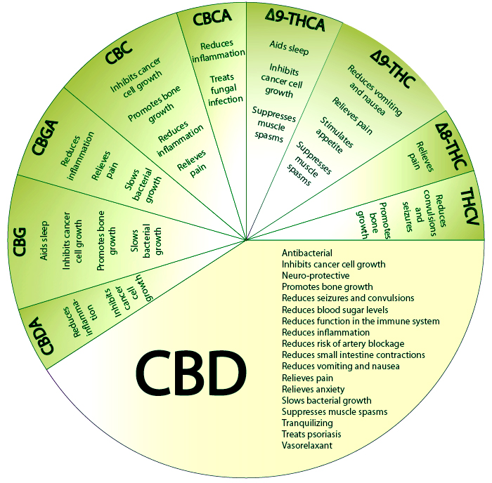 CBD Description